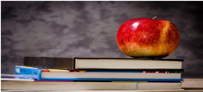 La Scuola e il mondo Insegnante